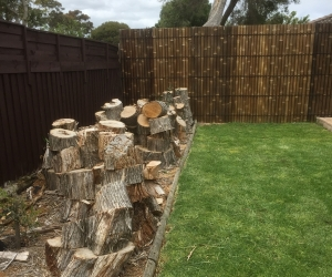 Firewood Free Mornington area