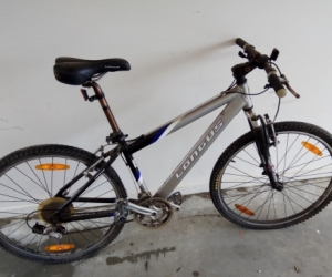 Old Longus mountain bike