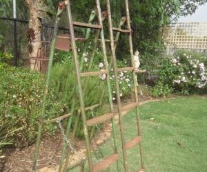 2 x 6ft Ladders