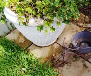 2 Large concrete Pots