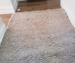 Large soft pile beige rug
