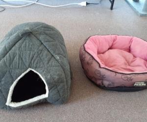 2x cat beds