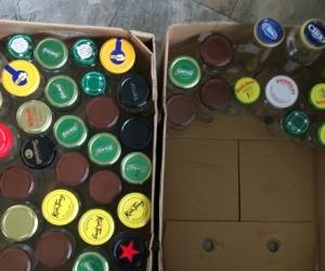 Glass jars with lids (50)