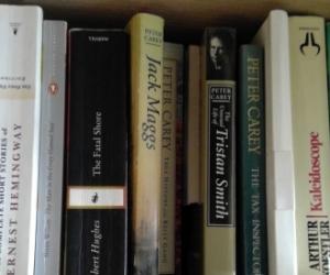 Books fiction, non-fiction