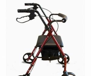 Mobility Walker - Light weight