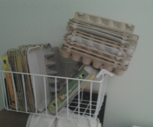 Empty Egg Cartons