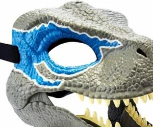 Raptor mask
