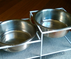 Dog / Pet bowls (metal) with stand