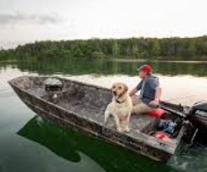 Fishing Boat needed