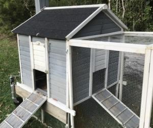 Chicken /rabbit/ guinea pig coop