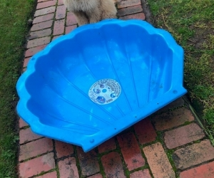 Kids Clam shell - paddle pool or sand pit