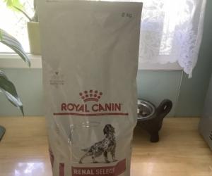 Royal cabin renal select  dry dog food