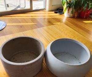 Plant pots - small